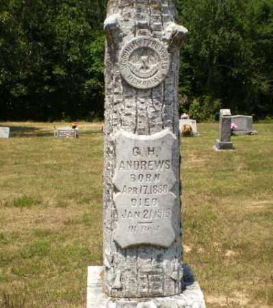 ANDREWS, G.H. - Craighead County, Arkansas | G.H. ANDREWS - Arkansas Gravestone Photos