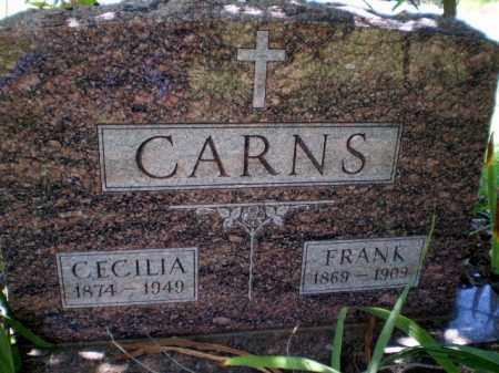 CARNS, FRANK - Craighead County, Arkansas | FRANK CARNS - Arkansas Gravestone Photos