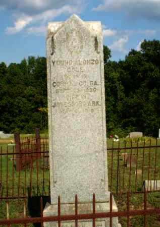 COLE, YOUNG ALONZO - Craighead County, Arkansas | YOUNG ALONZO COLE - Arkansas Gravestone Photos