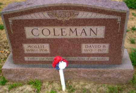 COLEMAN, MOLLIE - Craighead County, Arkansas | MOLLIE COLEMAN - Arkansas Gravestone Photos