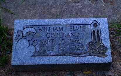 COPELAND, WILLIAM ELVIS - Craighead County, Arkansas | WILLIAM ELVIS COPELAND - Arkansas Gravestone Photos