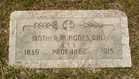 DALI, MOTHER M. AGNES - Craighead County, Arkansas | MOTHER M. AGNES DALI - Arkansas Gravestone Photos