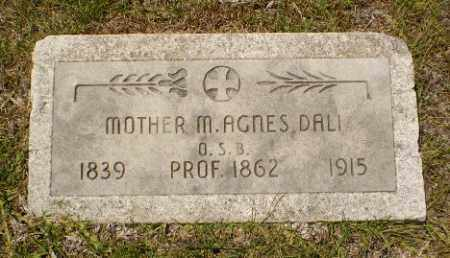 DALI, MOTHER M. AGNES - Craighead County, Arkansas | MOTHER M. AGNES DALI - Arkansas Gravestone Photos