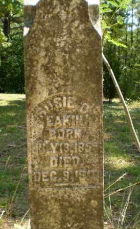 EAKIN, SUSIE D - Craighead County, Arkansas   SUSIE D EAKIN - Arkansas Gravestone Photos