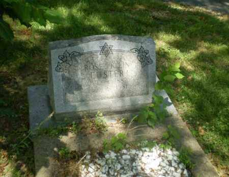 KLEIN EUSTER, ROSE - Craighead County, Arkansas   ROSE KLEIN EUSTER - Arkansas Gravestone Photos