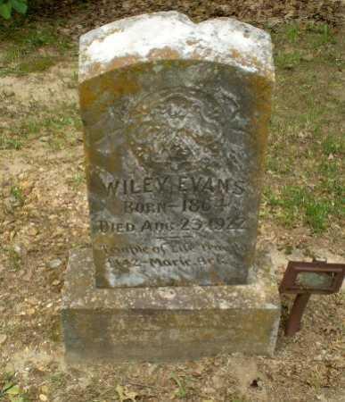 EVANS, WILEY - Craighead County, Arkansas   WILEY EVANS - Arkansas Gravestone Photos