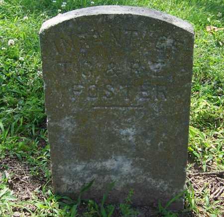 FOSTER, INFANT - Craighead County, Arkansas | INFANT FOSTER - Arkansas Gravestone Photos