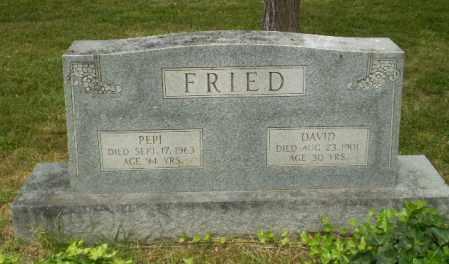 FRIED, PEPI - Craighead County, Arkansas | PEPI FRIED - Arkansas Gravestone Photos