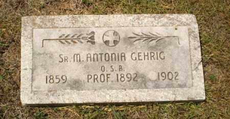 GEHRIG, SISTER M. ANTONIA - Craighead County, Arkansas   SISTER M. ANTONIA GEHRIG - Arkansas Gravestone Photos