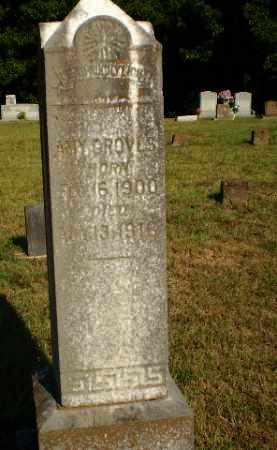 GROVES, AMY - Craighead County, Arkansas | AMY GROVES - Arkansas Gravestone Photos
