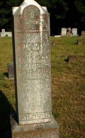 GROVES, AMY - Craighead County, Arkansas | AMY GROVES - Arkansas Gravestone Photos