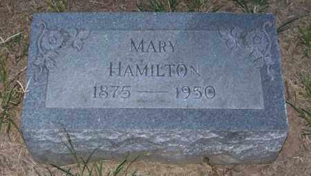 HAMILTON, MARY - Craighead County, Arkansas | MARY HAMILTON - Arkansas Gravestone Photos