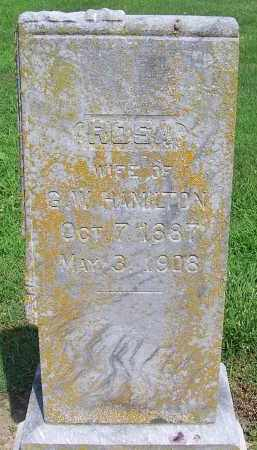 HAMILTON, ROSA - Craighead County, Arkansas | ROSA HAMILTON - Arkansas Gravestone Photos