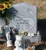 HAWKINS, MARY APRIL - Craighead County, Arkansas   MARY APRIL HAWKINS - Arkansas Gravestone Photos