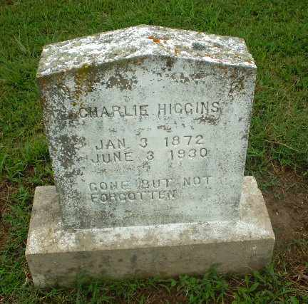 HIGGINS, CHARLIE - Craighead County, Arkansas   CHARLIE HIGGINS - Arkansas Gravestone Photos