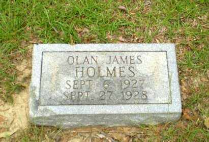 HOLMES, OLAN JAMES - Craighead County, Arkansas | OLAN JAMES HOLMES - Arkansas Gravestone Photos