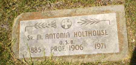 HOLTHOUSE, SISTER M. ANTONIA - Craighead County, Arkansas | SISTER M. ANTONIA HOLTHOUSE - Arkansas Gravestone Photos