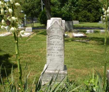 JACOBS, SALLIE G - Craighead County, Arkansas | SALLIE G JACOBS - Arkansas Gravestone Photos