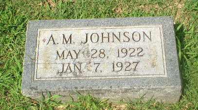 JOHNSON, A.M. - Craighead County, Arkansas   A.M. JOHNSON - Arkansas Gravestone Photos