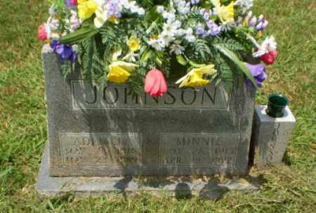 JOHNSON JR, ADEN - Craighead County, Arkansas | ADEN JOHNSON JR - Arkansas Gravestone Photos