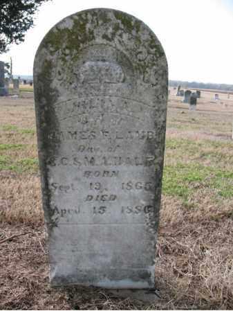 LAMB, JULIA - Craighead County, Arkansas | JULIA LAMB - Arkansas Gravestone Photos