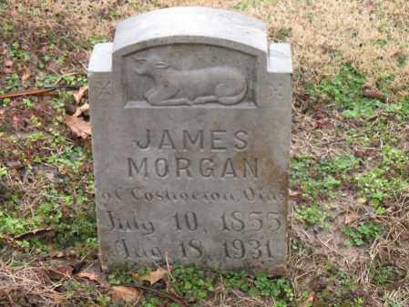MORGAN, JAMES - Craighead County, Arkansas   JAMES MORGAN - Arkansas Gravestone Photos
