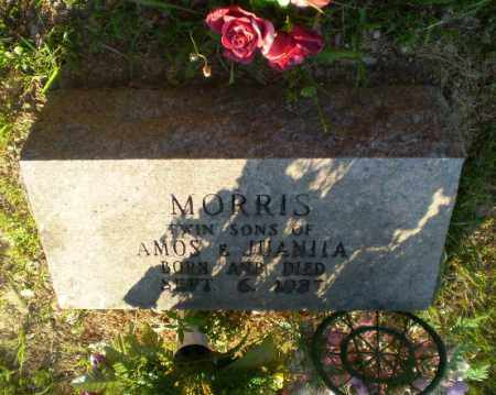 MORRIS, INFANT TWIN SONS - Craighead County, Arkansas | INFANT TWIN SONS MORRIS - Arkansas Gravestone Photos