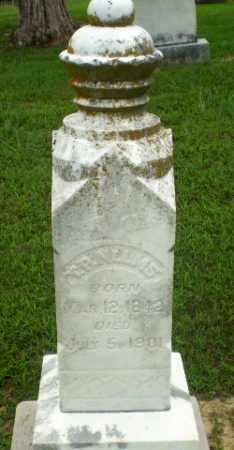 NELMS, T.P. - Craighead County, Arkansas | T.P. NELMS - Arkansas Gravestone Photos