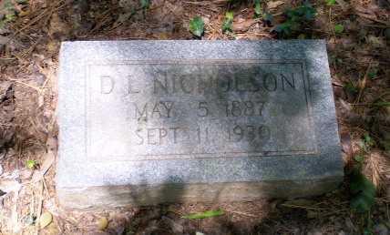 NICHOLSON, D.L. - Craighead County, Arkansas | D.L. NICHOLSON - Arkansas Gravestone Photos