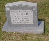 PALMER, JAMES RAYMOND - Craighead County, Arkansas | JAMES RAYMOND PALMER - Arkansas Gravestone Photos