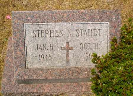 STAUDT, STEPHEN N - Craighead County, Arkansas | STEPHEN N STAUDT - Arkansas Gravestone Photos
