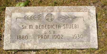 STUEBI, SISTER M. BENEDICTA - Craighead County, Arkansas | SISTER M. BENEDICTA STUEBI - Arkansas Gravestone Photos