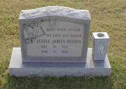 WOODS, JESSE JAMES - Craighead County, Arkansas | JESSE JAMES WOODS - Arkansas Gravestone Photos