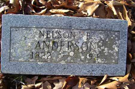 ANDERSON, NELSON F - Crawford County, Arkansas | NELSON F ANDERSON - Arkansas Gravestone Photos