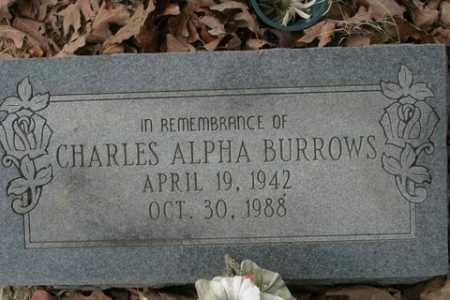BURROWS, CHARLES ALPHA - Crawford County, Arkansas | CHARLES ALPHA BURROWS - Arkansas Gravestone Photos