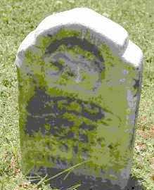 COIL, INFANT SON - Crawford County, Arkansas | INFANT SON COIL - Arkansas Gravestone Photos