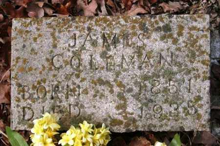 COLEMAN, JAMES - Crawford County, Arkansas | JAMES COLEMAN - Arkansas Gravestone Photos