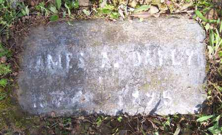 DAILY, JAMES A - Crawford County, Arkansas | JAMES A DAILY - Arkansas Gravestone Photos