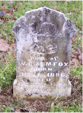 FOX, M C - Crawford County, Arkansas | M C FOX - Arkansas Gravestone Photos