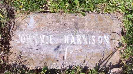 HARRISON, JOHNNIE - Crawford County, Arkansas | JOHNNIE HARRISON - Arkansas Gravestone Photos