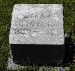 HAWKINS, SARAH - Crawford County, Arkansas | SARAH HAWKINS - Arkansas Gravestone Photos