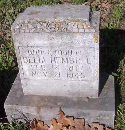 HEMBREE, DELIA - Crawford County, Arkansas | DELIA HEMBREE - Arkansas Gravestone Photos