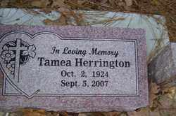 HERRINGTON, TAMEA - Crawford County, Arkansas | TAMEA HERRINGTON - Arkansas Gravestone Photos