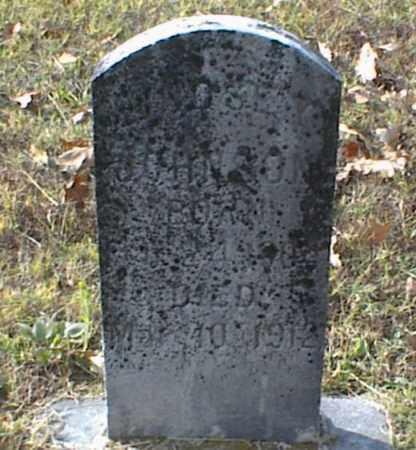 JOHNSON, LINDSEY - Crawford County, Arkansas | LINDSEY JOHNSON - Arkansas Gravestone Photos