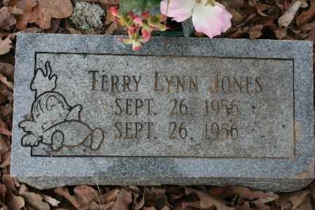 JONES, TERRY - Crawford County, Arkansas | TERRY JONES - Arkansas Gravestone Photos