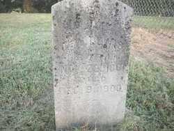 LEWIS, G  W - Crawford County, Arkansas | G  W LEWIS - Arkansas Gravestone Photos