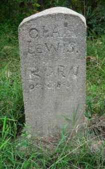 LEWIS, OLA F - Crawford County, Arkansas | OLA F LEWIS - Arkansas Gravestone Photos