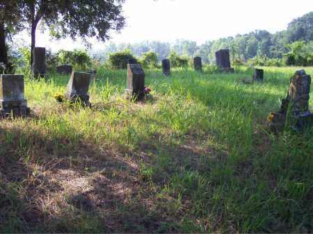 *MARLAR OVERVIEW,  - Crawford County, Arkansas |  *MARLAR OVERVIEW - Arkansas Gravestone Photos