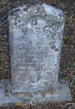 MARTIN, WILLIAM H - Crawford County, Arkansas | WILLIAM H MARTIN - Arkansas Gravestone Photos