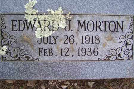 MORTON, EDWARD J - Crawford County, Arkansas | EDWARD J MORTON - Arkansas Gravestone Photos